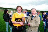 Four Roads Hurling 1994